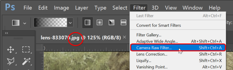 RAW photography: Adobe Camera Raw can edit JPEGs, PNGs and TIFFs